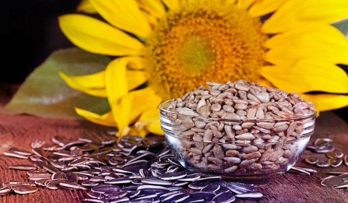 Sunflower seeds can cure skin infections