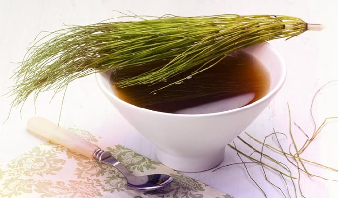 Horsetail supplements are as effective as commercial diuretics