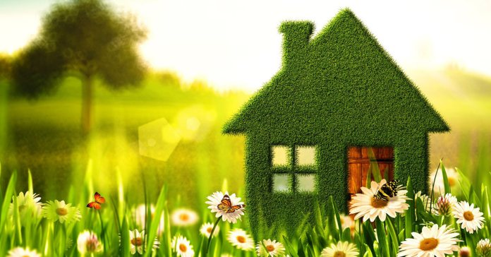 7 Easy Swaps You Can Make For A Greener House