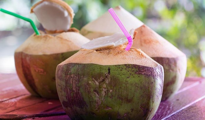 Coconut Water Keeps You Hydrated And Replenishes Lost Electrolytes