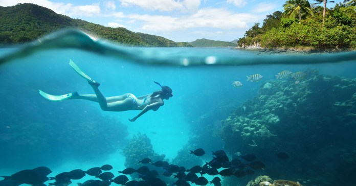 9 Wonderful Ocean Products That Promote Health