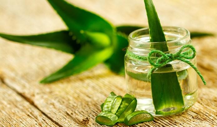 Aloe vera reduces inflammation.
