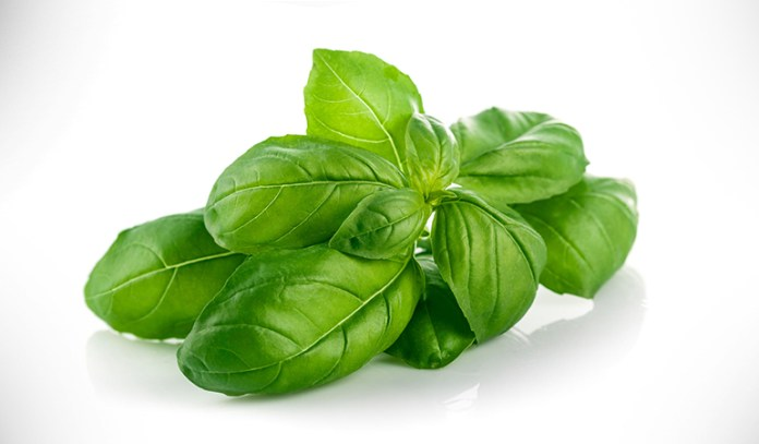 wo tablespoons of chopped fresh basil has 3 milligrams of magnesium.