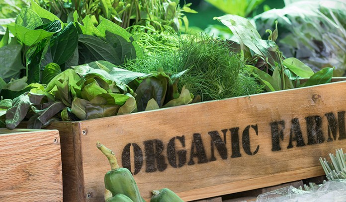 Organic foods are grown without the use of chemicals and reduce your toxin consumption.