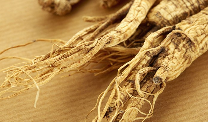 Ginseng fights cancer, diabetes, stress, and inflammation.