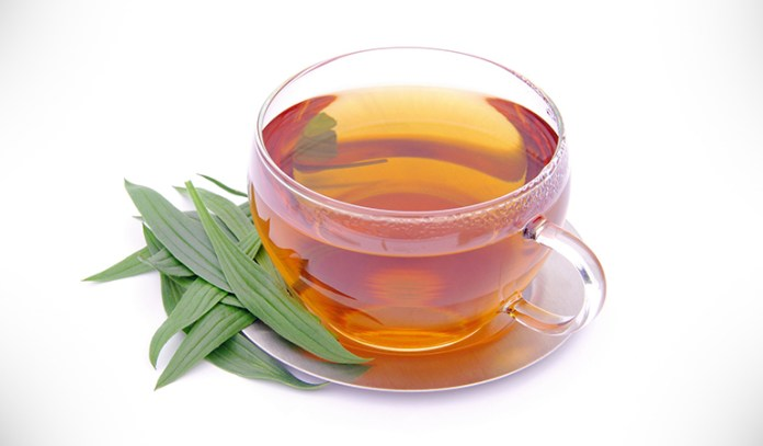Plantain herb tea can prevent diarrhea and relieve symptoms of fever and cold