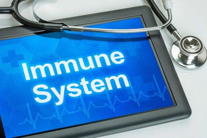 Fish oil may reduce immunity levels