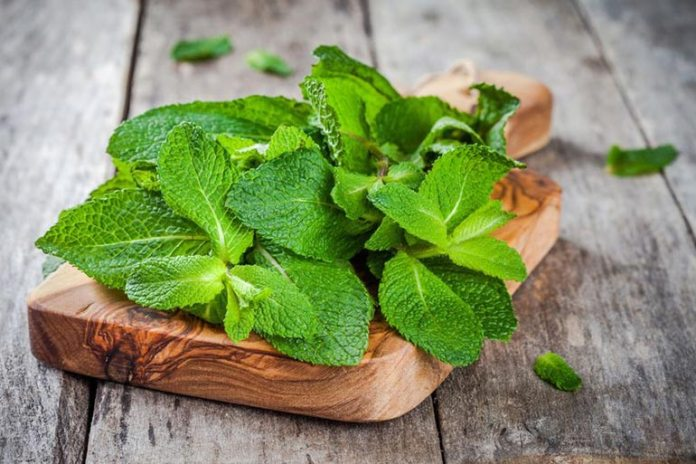 Mint is an ideal herb for gas or constipation