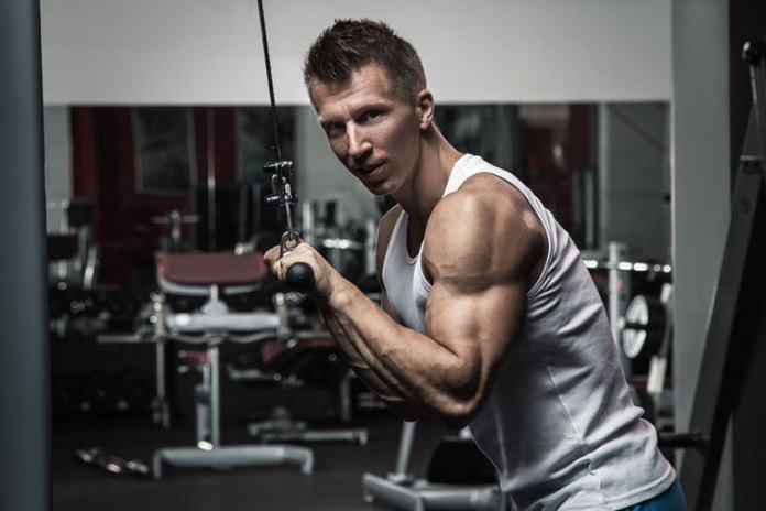 Triceps are worked well in this exercise