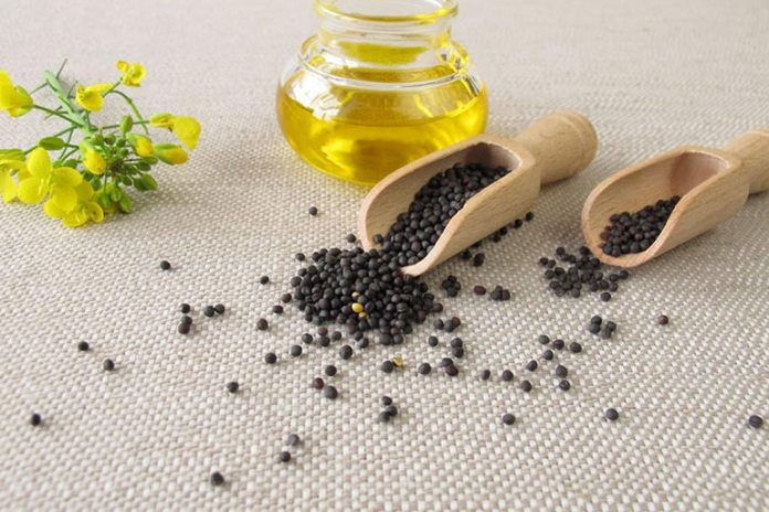 Canola oil is taken from rapeseed fruit