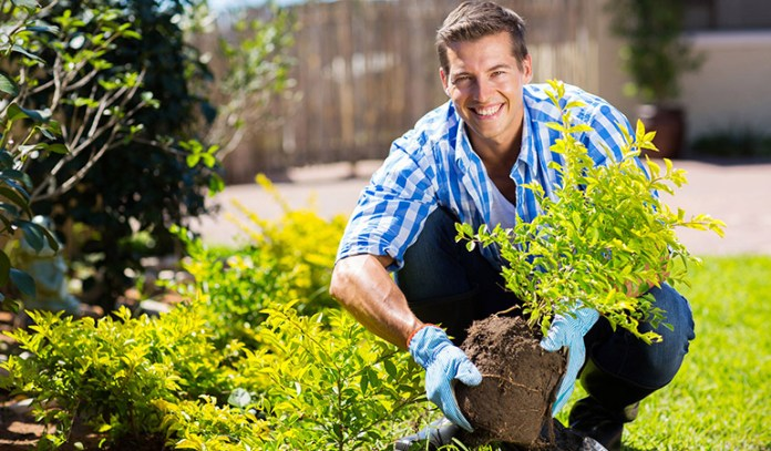 Gardening Is A Good Physical Activity For Multiple Sclerosis