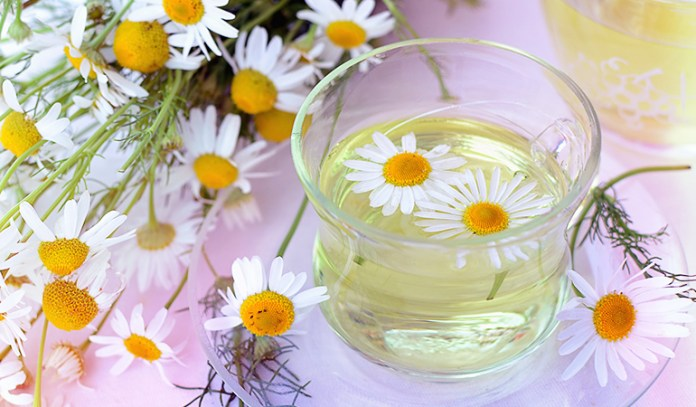 Rinse your hair with chamomile tea to get beautiful hair