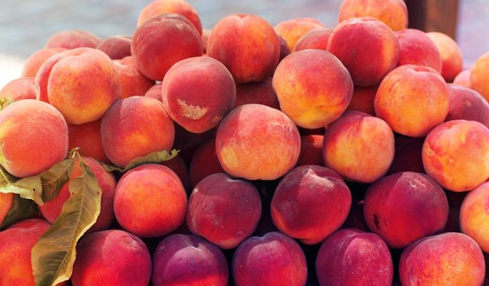Red peaches are sun-kissed and sweet