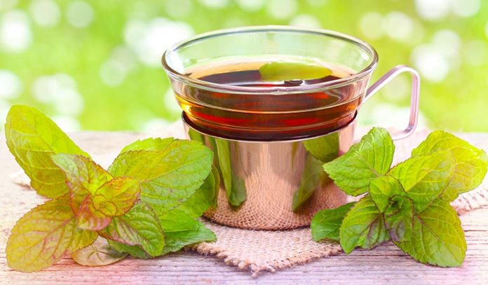 (Peppermint tea improves the flow of bile and by calms the muscles.