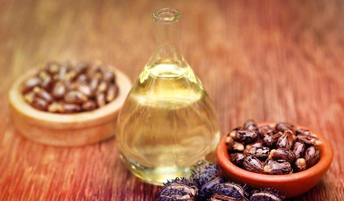 Castor oil nourishes hair follicles