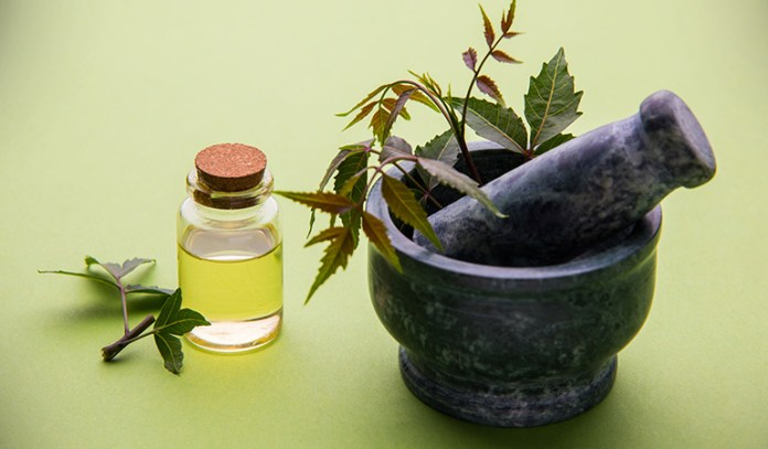 Curry Leaves And Coconut Hair Oil