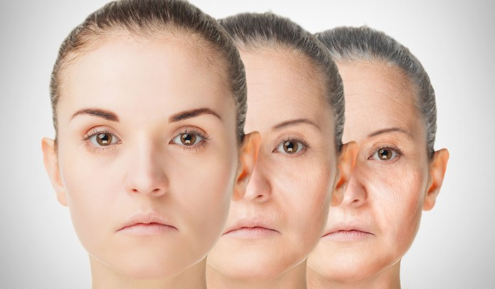 Higher Metabolism Speeds Up Aging Process