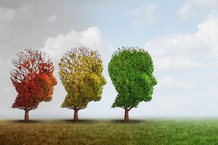 Meditation helps improve memory