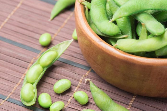soybeans are good sources of proteins