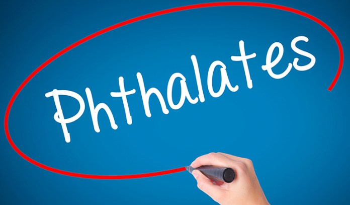 Phthalates mimic the functioning of reproductive hormones and affect fertility