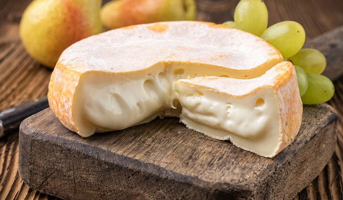 Use a twine on either end of the cheese to slice through it easily