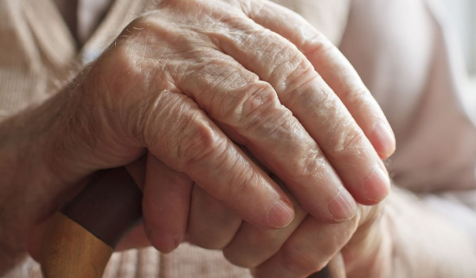 Since humans are not built too differently from animals, indoles may also improve the healthspan on elderly people.