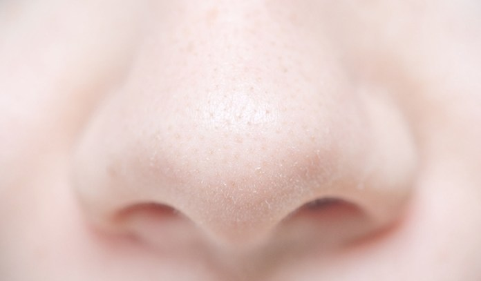 When a scent hits your nostrils in large concentrations, it activates a wide range of bad smell-associated receptors.