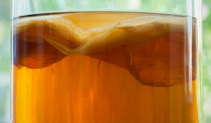 Kombucha uses live bacteria that help in the fermentation of the drink