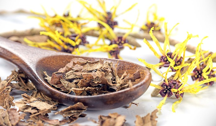 Witch hazel can help in getting rid of penile infections and dark spots