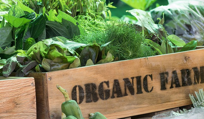Eat organic foods to enhance the benefits of a paleo diet