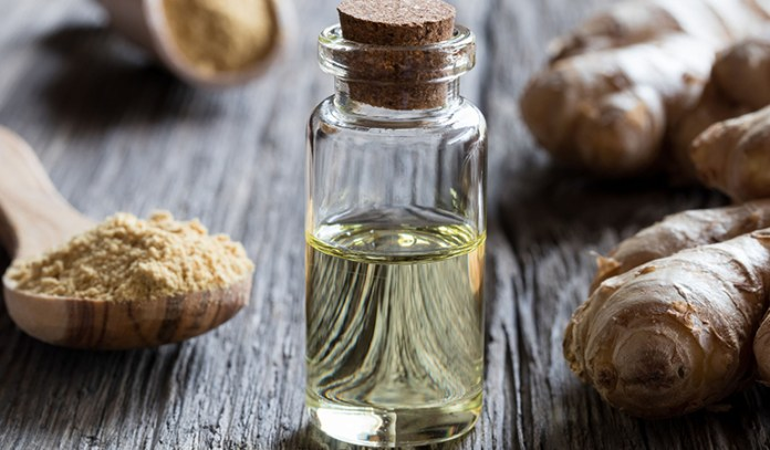 Ginger Extract Is A Natural Antibiotic And May Fight Bacterial Infections