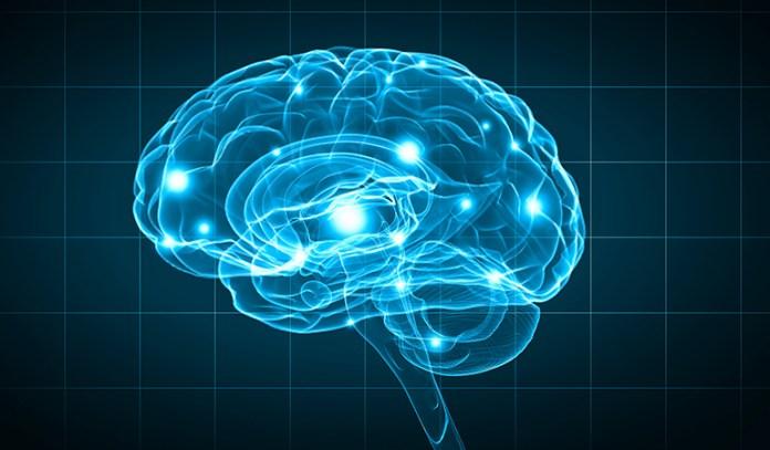 Tai Chi can improve the gut-brain axis