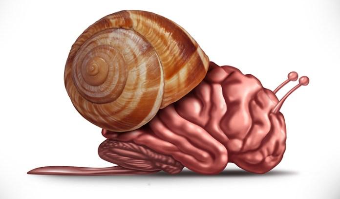 Reduces Brain Functioning