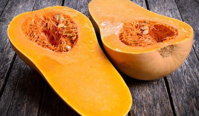 Eating genetically modified squash results in ingestion of multiple virus strains, the effect of which is unknown