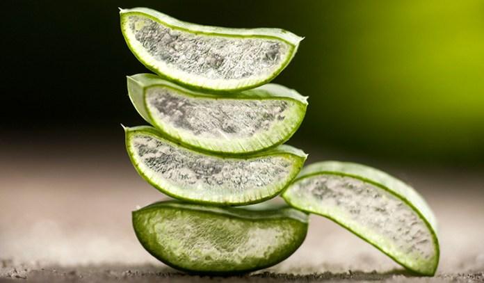 aloe vera moisturizes, restores elasticity, and lightens blemishes