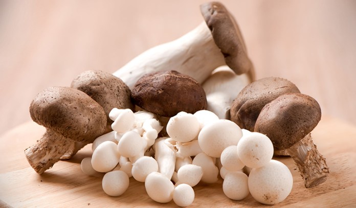 Mushrooms are low in fat, which is good for those who want to lose weight