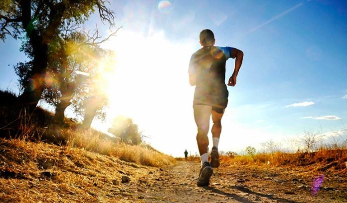 Cordyceps improve oxygen utilization