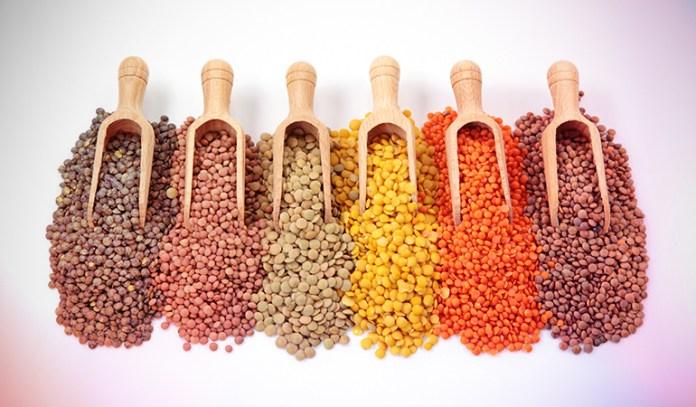 Lentils are rich in folic acid