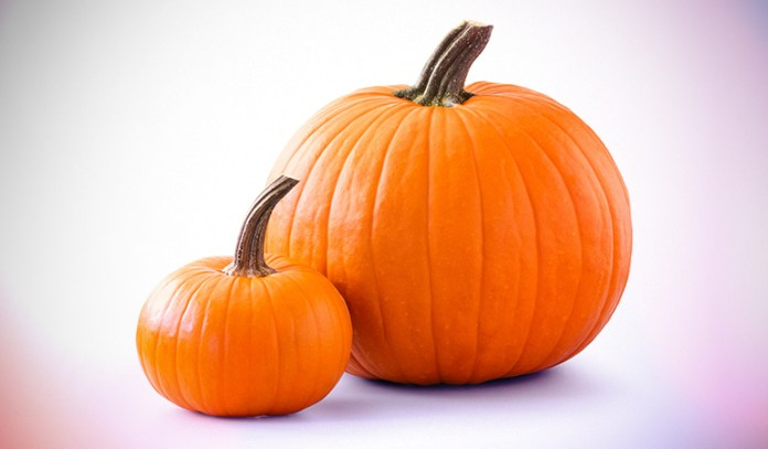 1 cup of pumpkin contains 1.40 mg iron