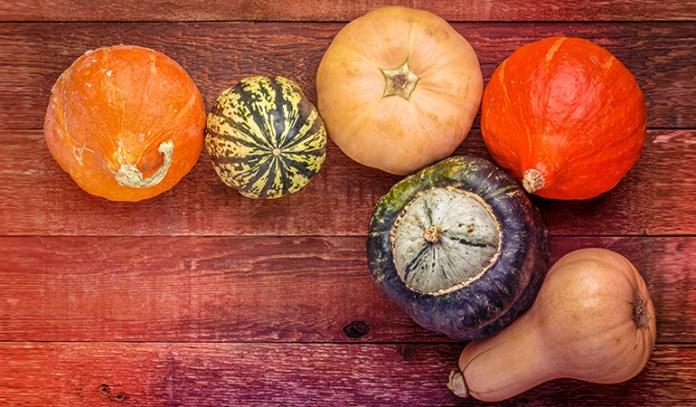 Winter squash a good source of omega 3 fatty acids.