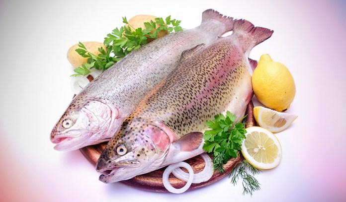 A serving of wild rainbow trout has 0.44 gm of DHA and 0.40 gm of EPA