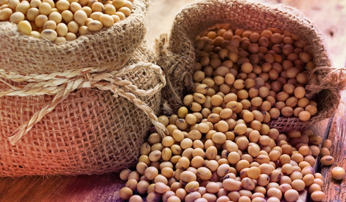Soybeans are a good source of omega 3 fatty acids.