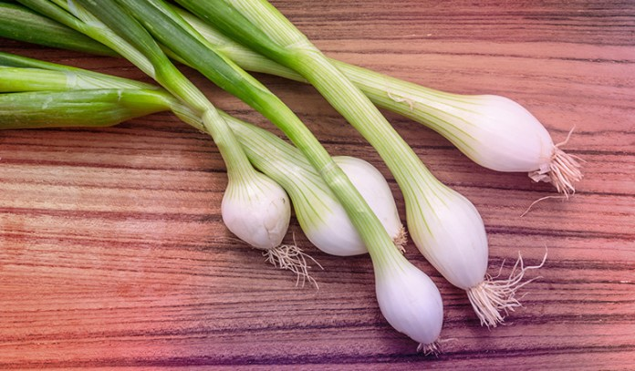 Half a cup of chopped scallions has 103.5 mcg of vitamin K.