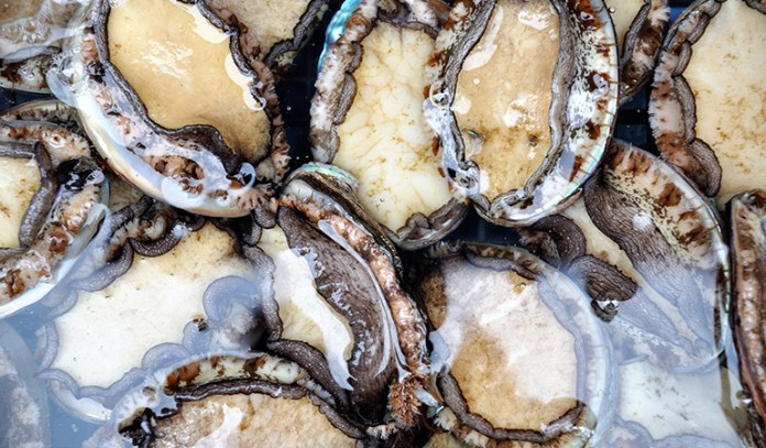 A 3 ounce serving of abalone has 3.4 mg of vitamin E (22.7% DV).