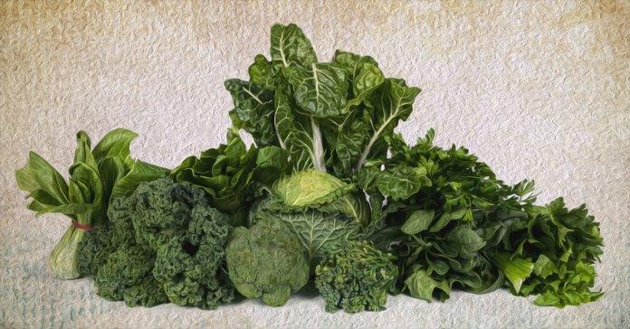 Vegetables rich in vitamin E.