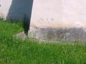 fotografie1234