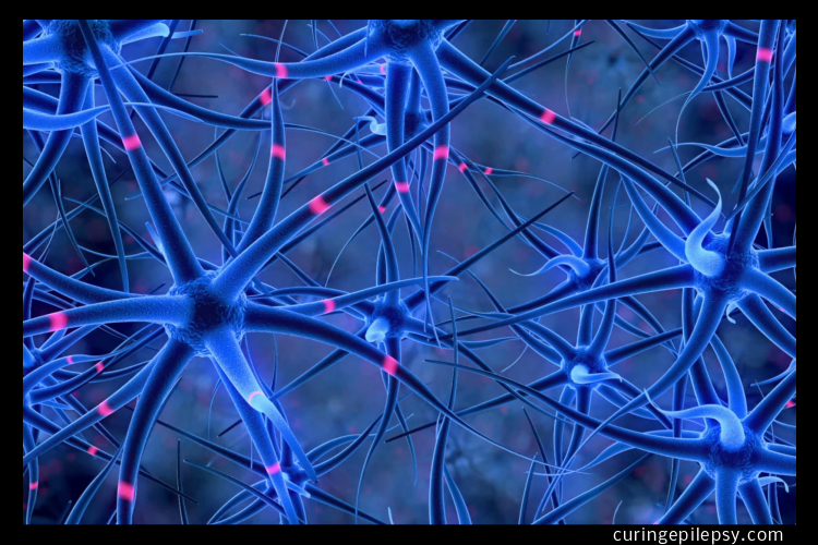 Certain Set of Nerve Cells Controls Seizures' That Are Spread Through The Brain
