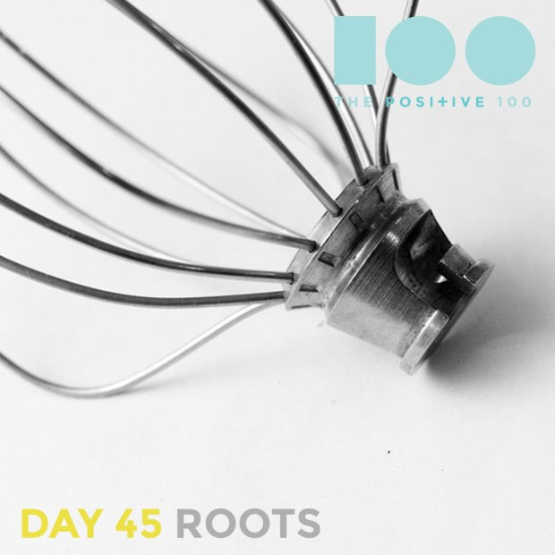 Day 45 : Roots | Positive 100 | Chronic Positivity Project