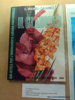 Libro scritto dai genitori di Italo Calvino