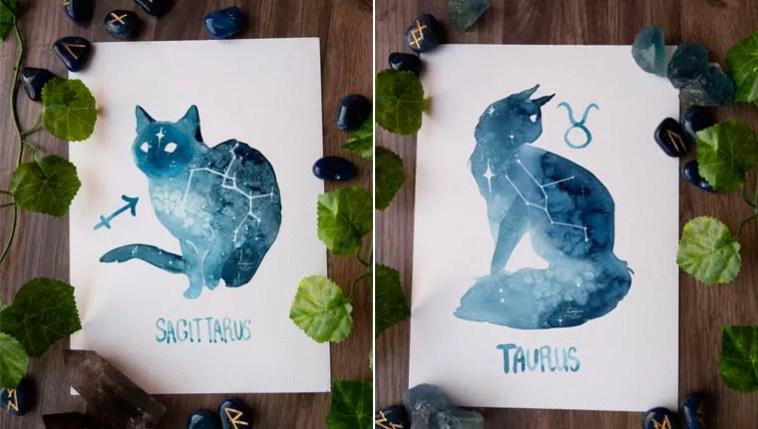 Gatinhos representam os signos do zodíaco